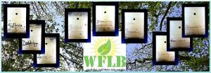 9 Arbeitsbereiche WFLB
